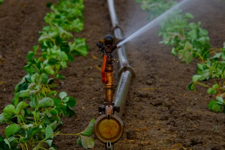 IRRIGAZIONE water_sprinklers_water_jet_artificial_agriculture_irrigation_landscape_drought_water-866975.jpg!d